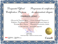 Designated Official Certification Program